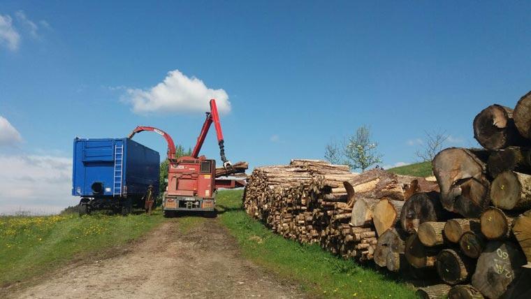LKW lädt Holzstämme ab
