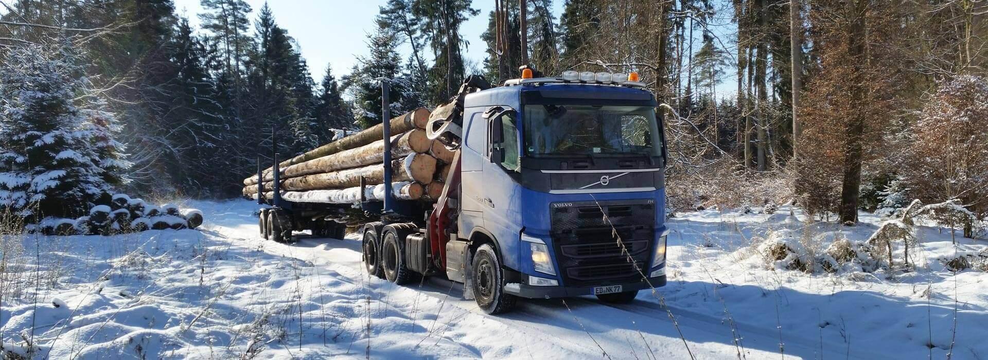 Holzarbeiten im Winter